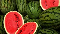Watermelons (Steve Evans / CC BY 2.0)