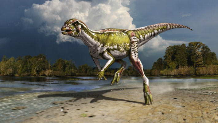 Life reconstruction of Albertadromeus syntarsus (Julius T. Csotonyi)