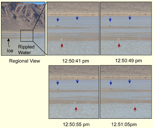 Time lapse images of a moving rock acquired on January 9, 2014: image on the left shows the wide-angle view; interior black frame indicates the view in other frames; in close-up frames, blue arrows show stationary rocks and red arrow - a rock in motion (moving from left to right); total movement lasted about 18 seconds; dark, flat areas on the pond are panels of about 3 mm thick ice surrounded by rippled water several centimeters deep; ice thickness estimated from inshore ice panels; broken ice panels accumulated on the upstream side of the moving rock in the last two images. Image credit: Norris RD et al.