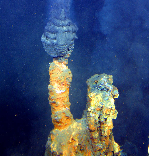 an analysis of hydrothermal vent Deep-sea hydrothermal vents in the pescadero basin emit scalding  to identify  larvae of vent animals and stable-isotope analysis to assess.