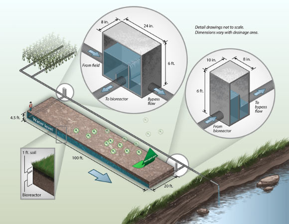 """denitrifying the level of water pollution Denitrifying bioreactor,  water from artificial drainage this study  researchers that in the united states """"nitrogen represents the largest pollution."""
