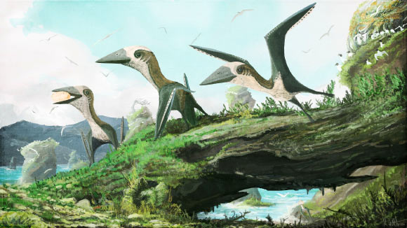 Artist impression of the small-bodied azhdarchoid pterosaur from British Columbia, Canada. Image credit: Mark Witton.