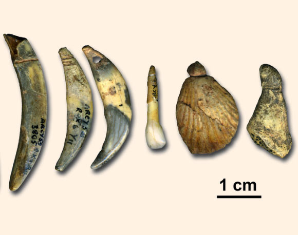 Dating using fossil assemblages of pollen 1