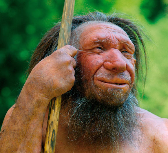 Many Neanderthals had 'swimmer's ear'