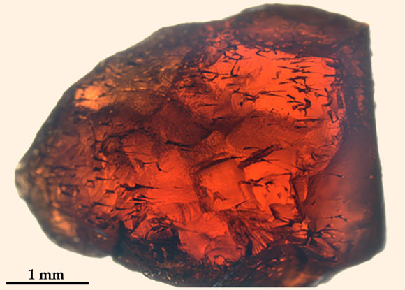 Hexbyte - News - Science/Nature | Photograph of a garnet crystal with distinct tubular structures. Image credit: Ivarsson et al, doi: 10.1371/journal.pone.0200351.