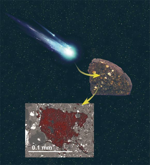 An illustration showing how a sliver of comet building block material was swallowed by an asteroid and preserved inside a meteorite. Image credit: Larry Nittler / NASA.