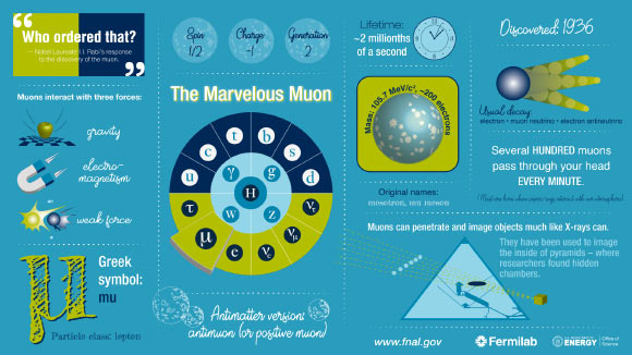 This infographic lays out some of muon's basic stats alongside fun facts. Image credit: Diana Brandonisio.