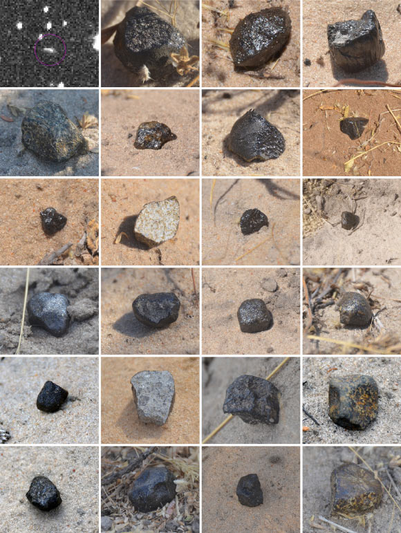 Asteroid 2018 LA in space (top left image by the Catalina Sky Survey) and the first 23 meteorites recovered on the ground as photographed in situ (scale of each figure is about 4 x 4 cm). Meteorites are shown in order of find (MP-01 top left, to MP-23 bottom right). Image credit: Jenniskens et al., doi: 10.1111/maps.13653.