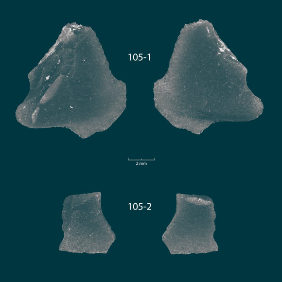 9,000-Year-Old Obsidian Tools Found at Bottom of Lake Huron | Archaeology - Sci