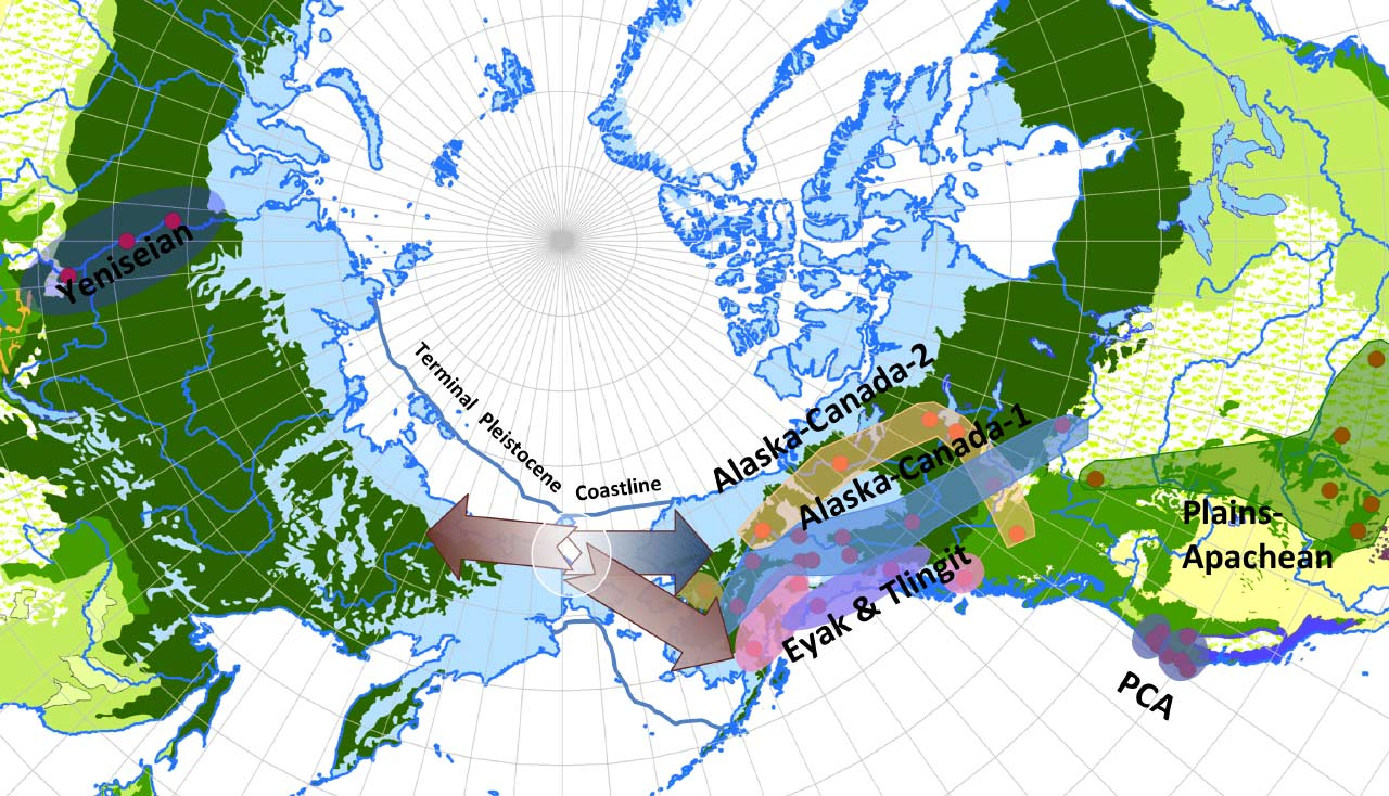 Linguistic Study Reveals BackMigration Of Early Native Americans - Native language world map
