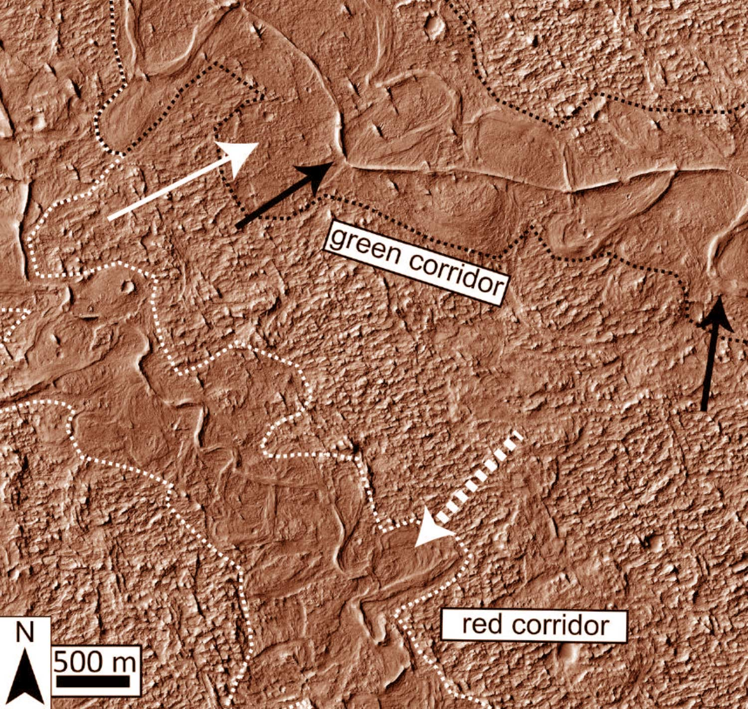 Ancient Mars supported liquid water