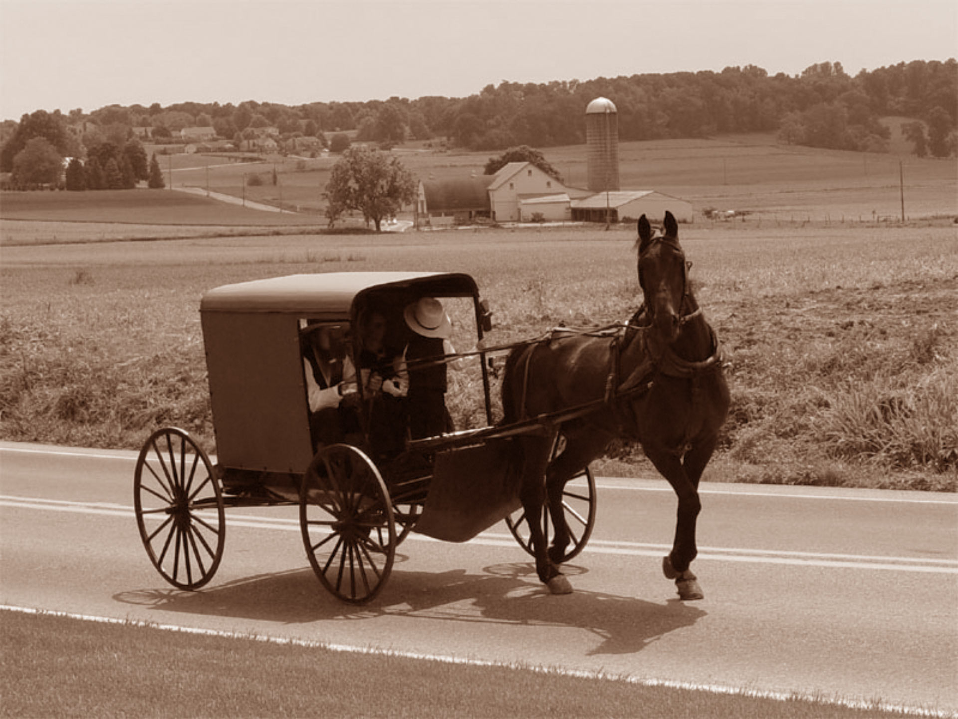 Mutation Found in Amish Said to Make Some Live 10 Years Longer