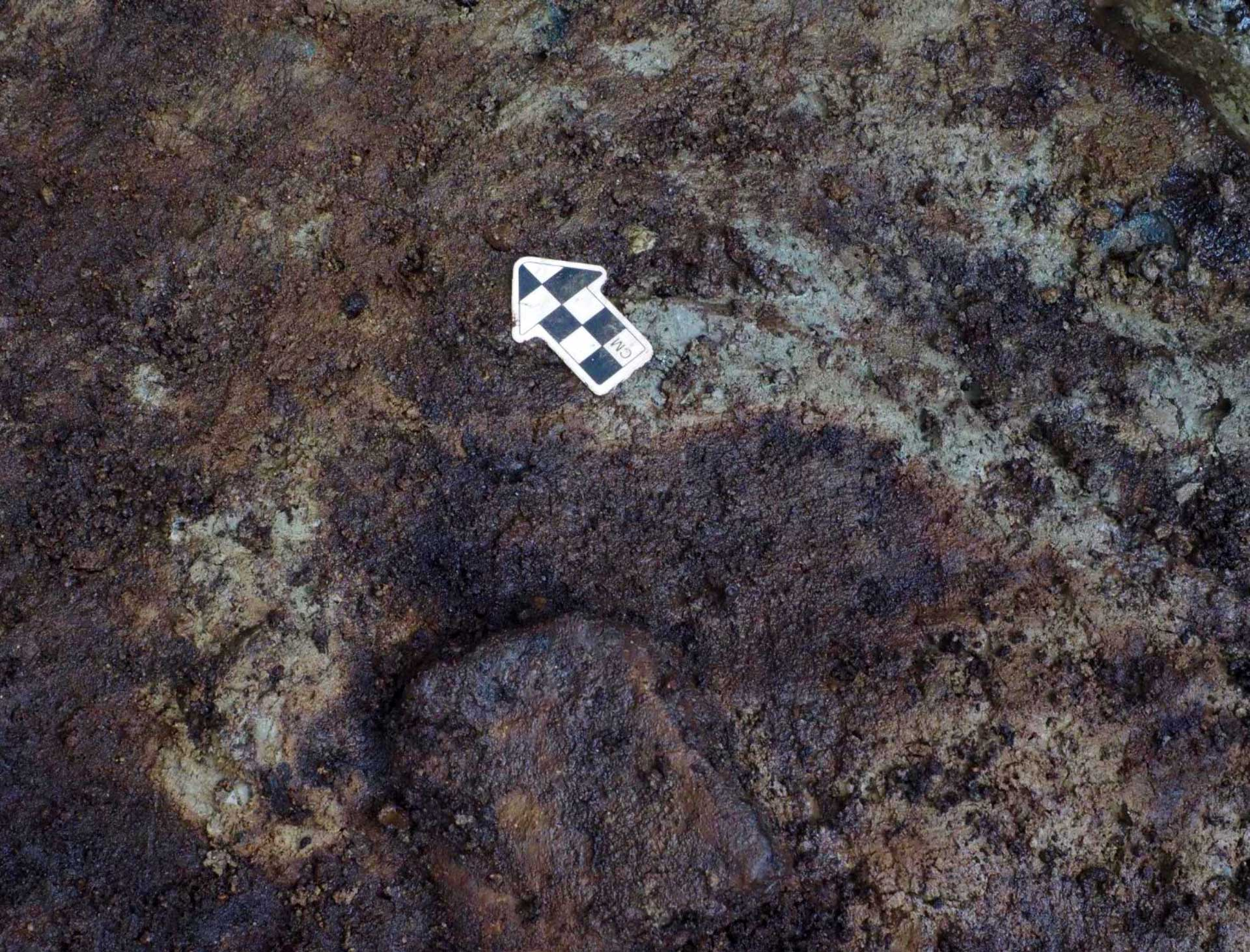 Scientists find 13000-year-old footprints in Canada