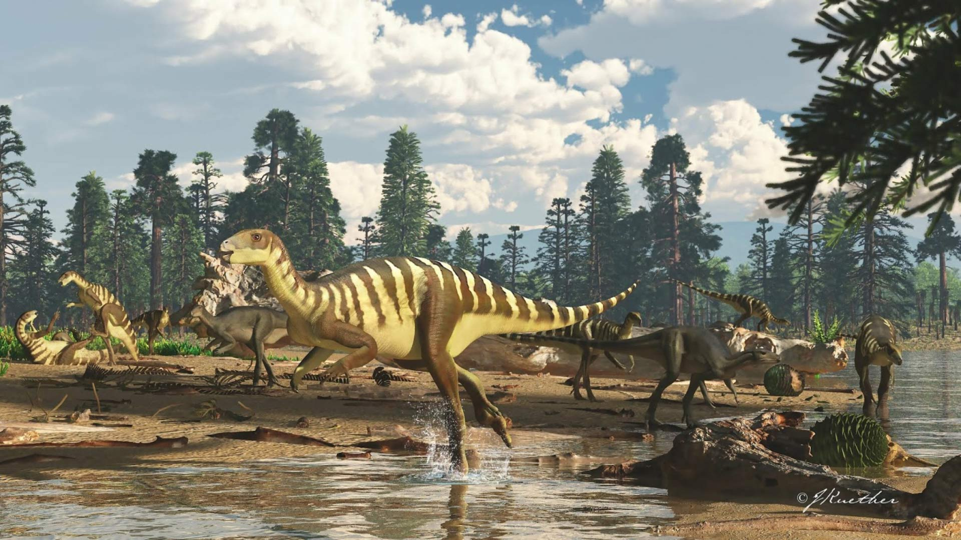 A New Wallaby-Sized Dinosaur Has Been Discovered In Australia